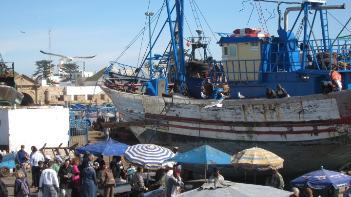 Port with little fish market in front