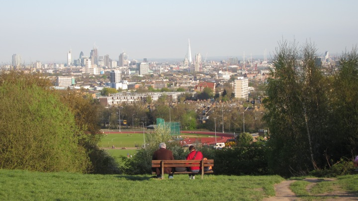 Parliament Hill, Hampstead Heath, as seen in many films and TV shows.  My favourite free view of London.