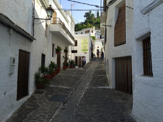 Pampaneira