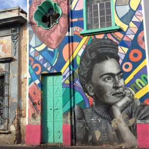 Calle Coronilla: Frida